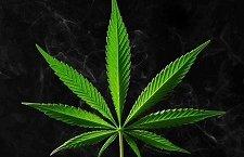 Продажа наркотиков: размер, наказание, сроки, ответственность