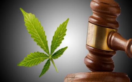 адвокат по наркотикам осужденным